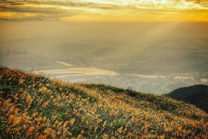 DU LỊCH ĐÀI LOAN Kinh nghiệm cần thiết khám phá công viên quốc gia Dương Minh Sơn (Yangmingshan)